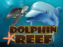 Dolphin Reef - игровой автомат