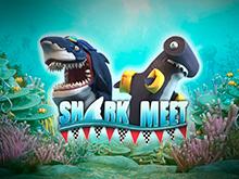 Shark Meet - игровой автомат